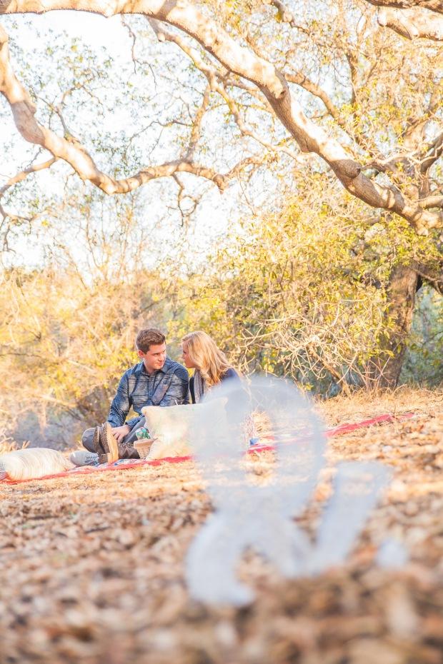01_Engagement_Picnic_0103