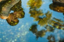 Orange County Engagement Photography 14